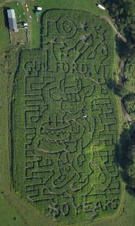 Gaines Farm Corn Maze