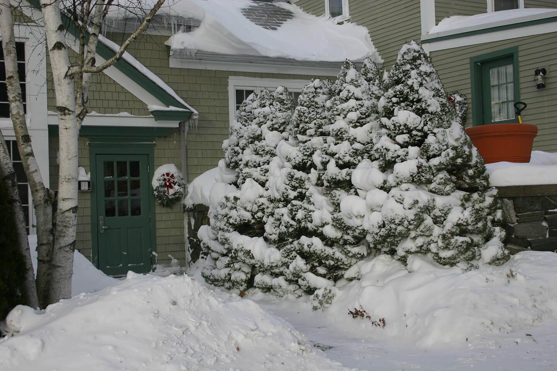 Fun In The New England Winter Snow