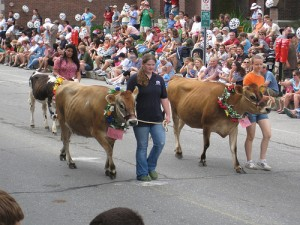 The Strolling of the Heifers