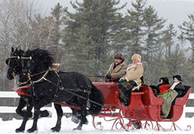 A couple ride a sleigh through the snow