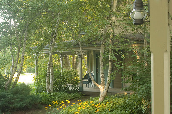 The front of a cabin surrounded by green aspen trees