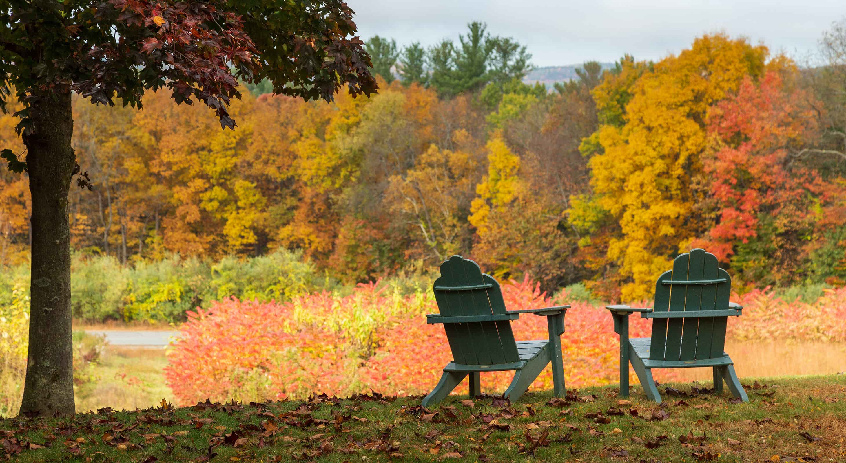 chairs with a view of the fall colors in New Hampshire