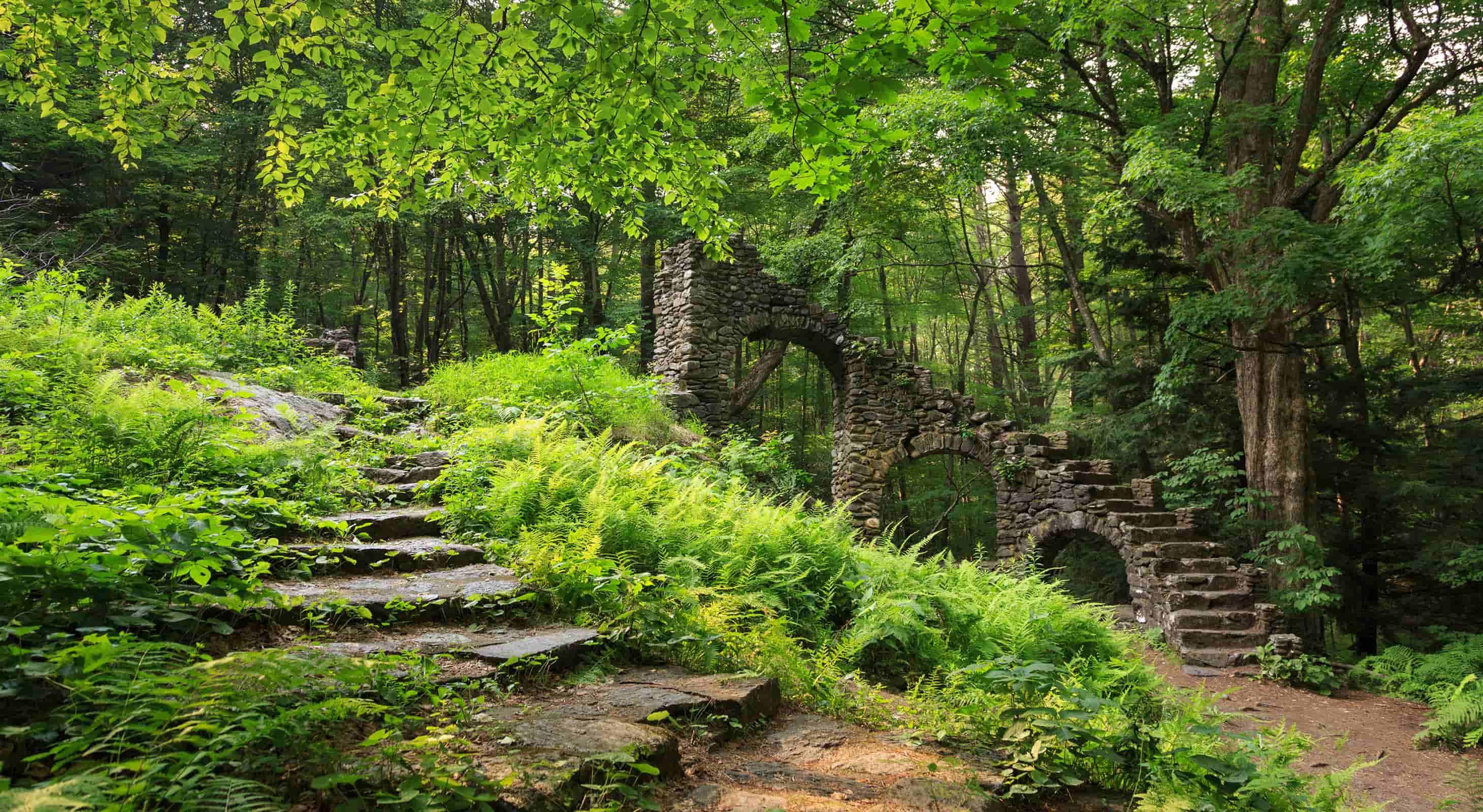 Ann Stokes Trail