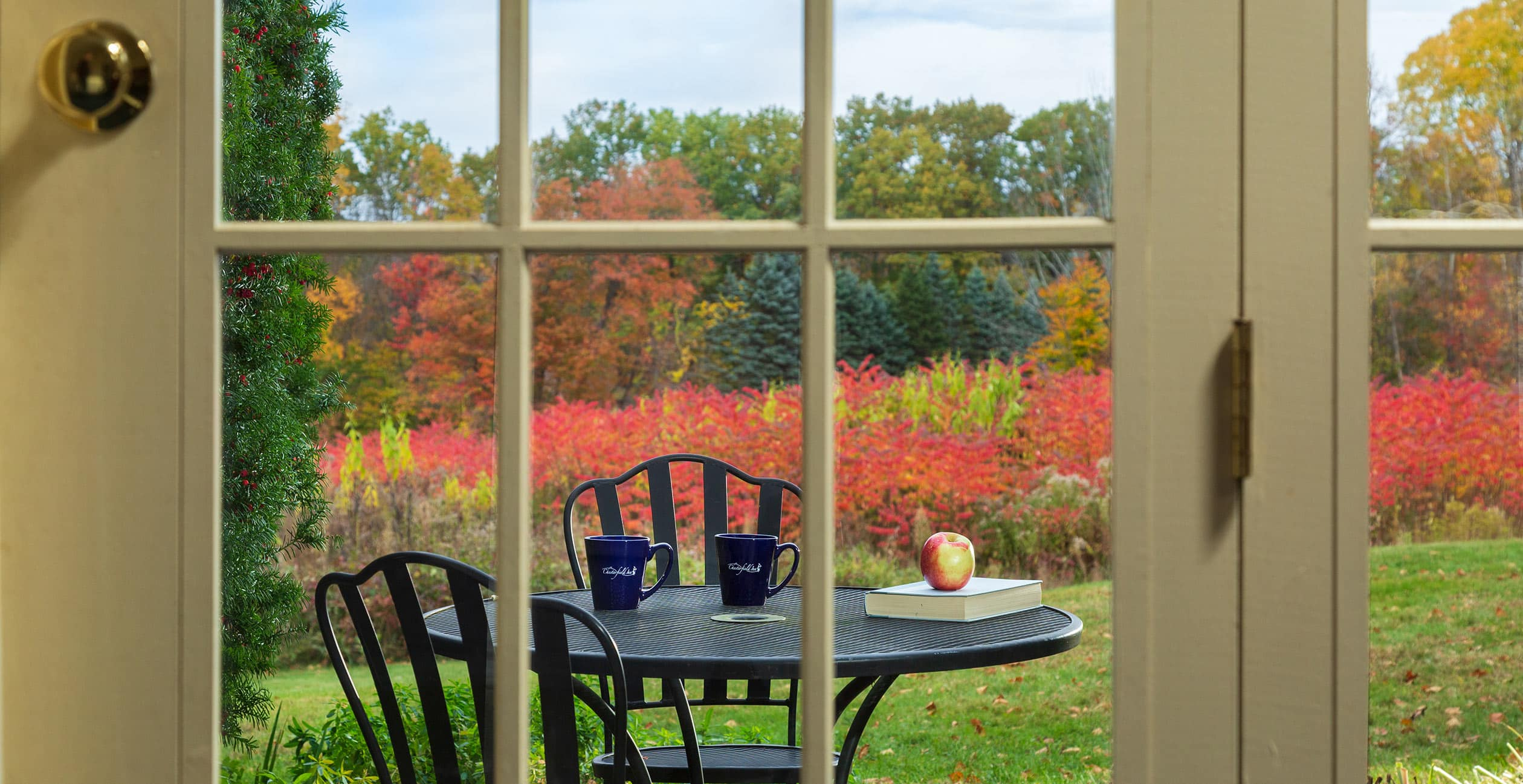 Fall Foliage on the patio outside of the French doors